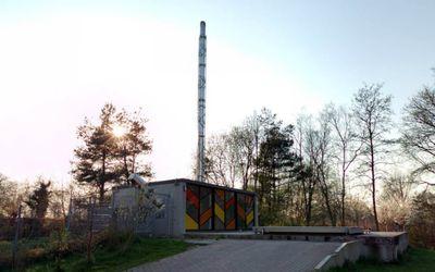 biomassa-marum-2